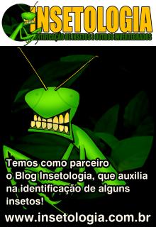 PARCEIRO - Blog Insetologia